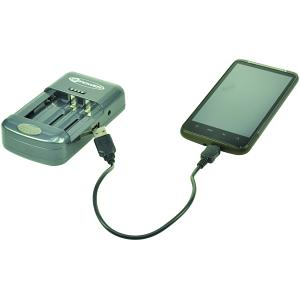 Color Flash 250 Charger